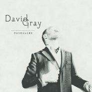 David Gray, Foundling (CD)