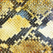 The Amazing Snakeheads, Amphetamine Ballads (CD)