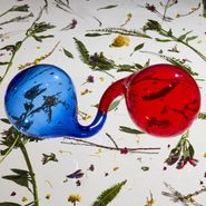 Dirty Projectors, Lamp Lit Prose (CD)