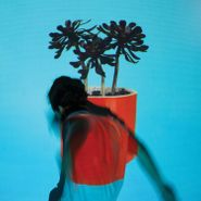 Local Natives, Sunlit Youth [Indie Exclusive Clear Vinyl] (LP)