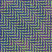 Animal Collective, Merriweather Post Pavilion [180 Gram Vinyl] (LP)