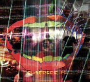 Animal Collective, Centipede Hz (CD)