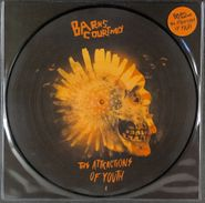 Barns Courtney, The Attractions Of Youth [Picture Disc] (LP)