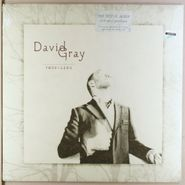 David Gray, Foundling (LP)