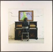 Delta Spirit, Into The Wide [White Vinyl] (LP)