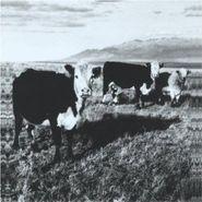 Mark Kozelek, The Finally (LP)