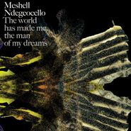 Meshell Ndegeocello, World Has Made Me The Man Of My Dreams [Import] (CD)