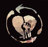 Rise Against, Endgame [180 Gram Orange Marble Vinyl] (LP)