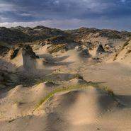 White Manna, Dune Worship (LP)