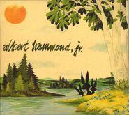 Albert Hammond Jr., Yours To Keep (CD)