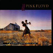 Pink Floyd, A Collection Of Great Dance Songs (CD)