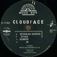 "Cloudface, Devonian Garden (12"")"