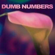 Dumb Numbers, Dumb Numbers (CD)