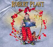 Robert Plant, Band Of Joy (CD)