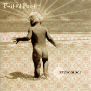 Rusted Root, Remember (CD)