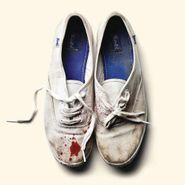 Sleigh Bells, Reign of Terror (CD)