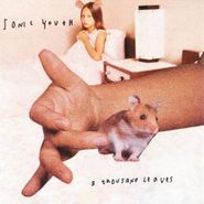 Sonic Youth, A Thousand Leaves (CD)