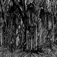 Sunn O))), Black One (CD)