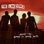 The Libertines, Anthems For Doomed Youth (CD)