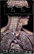 Tool, Lateralus (Cassette)