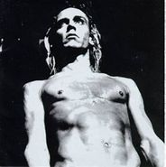 Various Artists, We Will Fall: The Iggy Pop Tribute (CD)