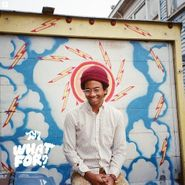 toro y moi what for? lp