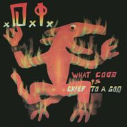 D.I., What Good Is Grief To A God? (CD)