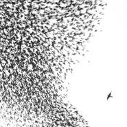 Wilco, Sky Blue Sky (CD)