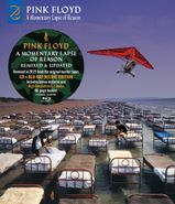 Pink Floyd, A Momentary Lapse Of Reason [CD/Blu-ray Deluxe Edition] (CD)