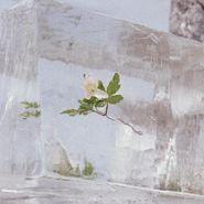 Efterklang, Windflowers (CD)