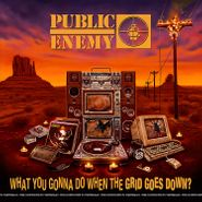 Public Enemy, What You Gonna Do When The Grid Goes Down? (CD)