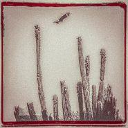 Alejandro Escovedo, La Cruzada [White Vinyl] (LP)