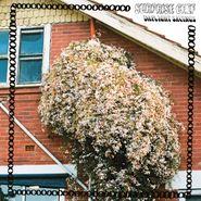 Surprise Chefl, Daylight Savings (CD)