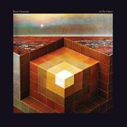 Black Mountain, In The Future (LP)