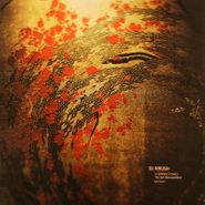 DJ Krush, Stepping Stones: The Self-Remixed Best -Lyricism- (LP)