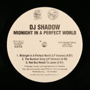 "DJ Shadow, Midnight In A Perfect World (12"")"