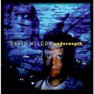 David Wilcox, Underneath (CD)