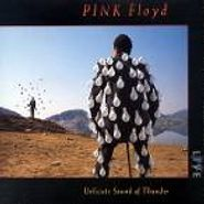 Pink Floyd, Delicate Sound of Thunder (CD)