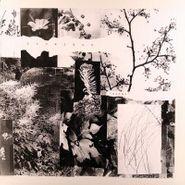 Prurient, Roman (LP)
