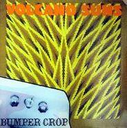 Volcano Suns, Bumper Crop (CD)