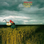Depeche Mode, A Broken Frame (LP)