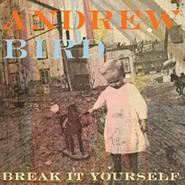 Andrew Bird, Break It Yourself (CD)