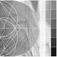 Ricardo Donoso, Assimilating The Shadow (LP)