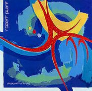 Robert Plant, Shaken 'N' Stirred (CD)