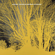 Nada Surf, The Stars Are Indifferent To Astronomy (LP)