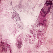 Porcelain Raft, Strange Weekend (LP)