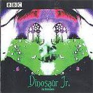 Dinosaur Jr., In Session (CD)