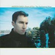 Andrew Bird's Bowl Of Fire, Swimming Hour (CD)