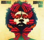 Incognito, Amplified Soul (CD)
