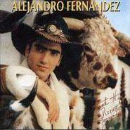 Alejandro Fernández, Alejandro Fernandez (CD)